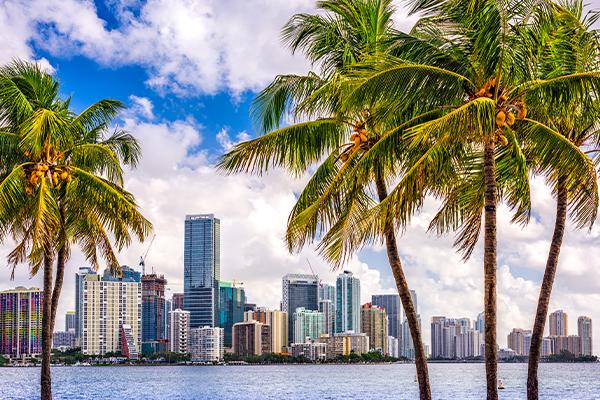 Miami 600px